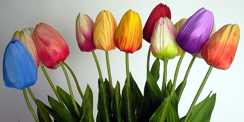 wiosenne-nowosci